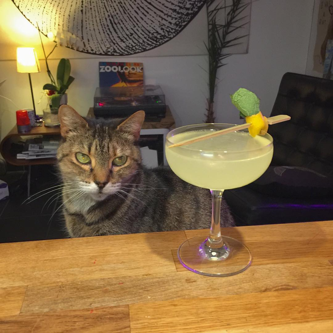 Midweek Corpse Reviver No.2