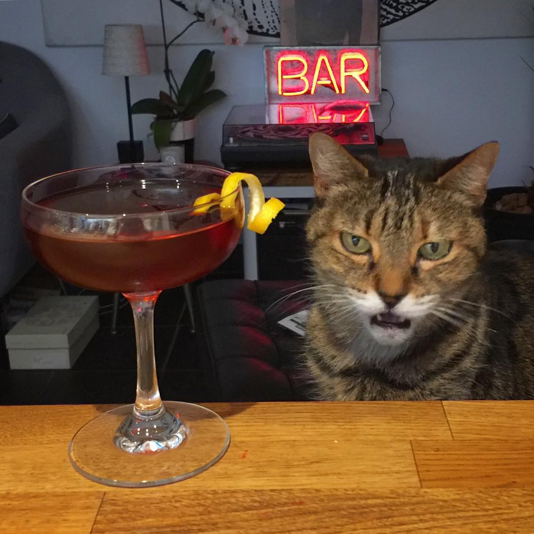 A Monday Turf Cocktail