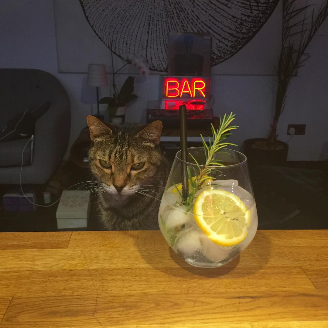 Obeying the G&T 50:50 Rule