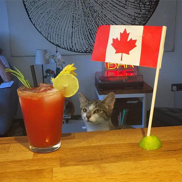Canada Day Bloody Caesar