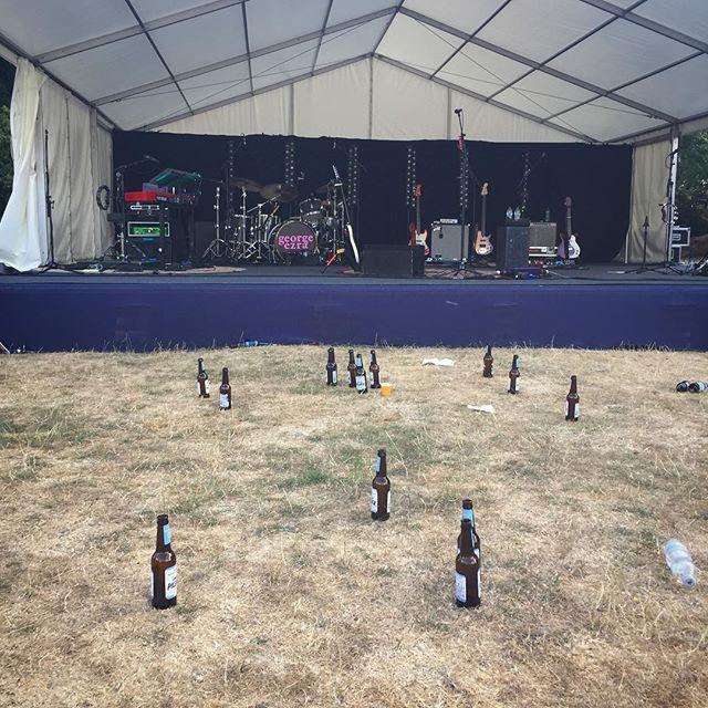 Penguins at a gig