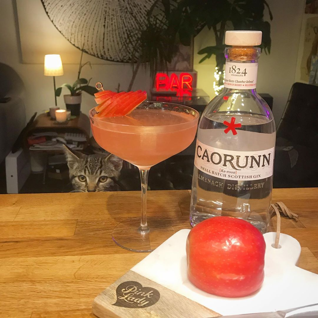 My wife @wearsmymoney got sent a bottle of @caorunngin for and asked me to make a cocktail for it, so I tweaked a with some @campariofficial to match some apples from @pinkladyappleuk as a garnish. It was late night work, so it was great to have Dave the kitten to keep me company. I call it The Pink Phantom. Recipe to follow on my blog