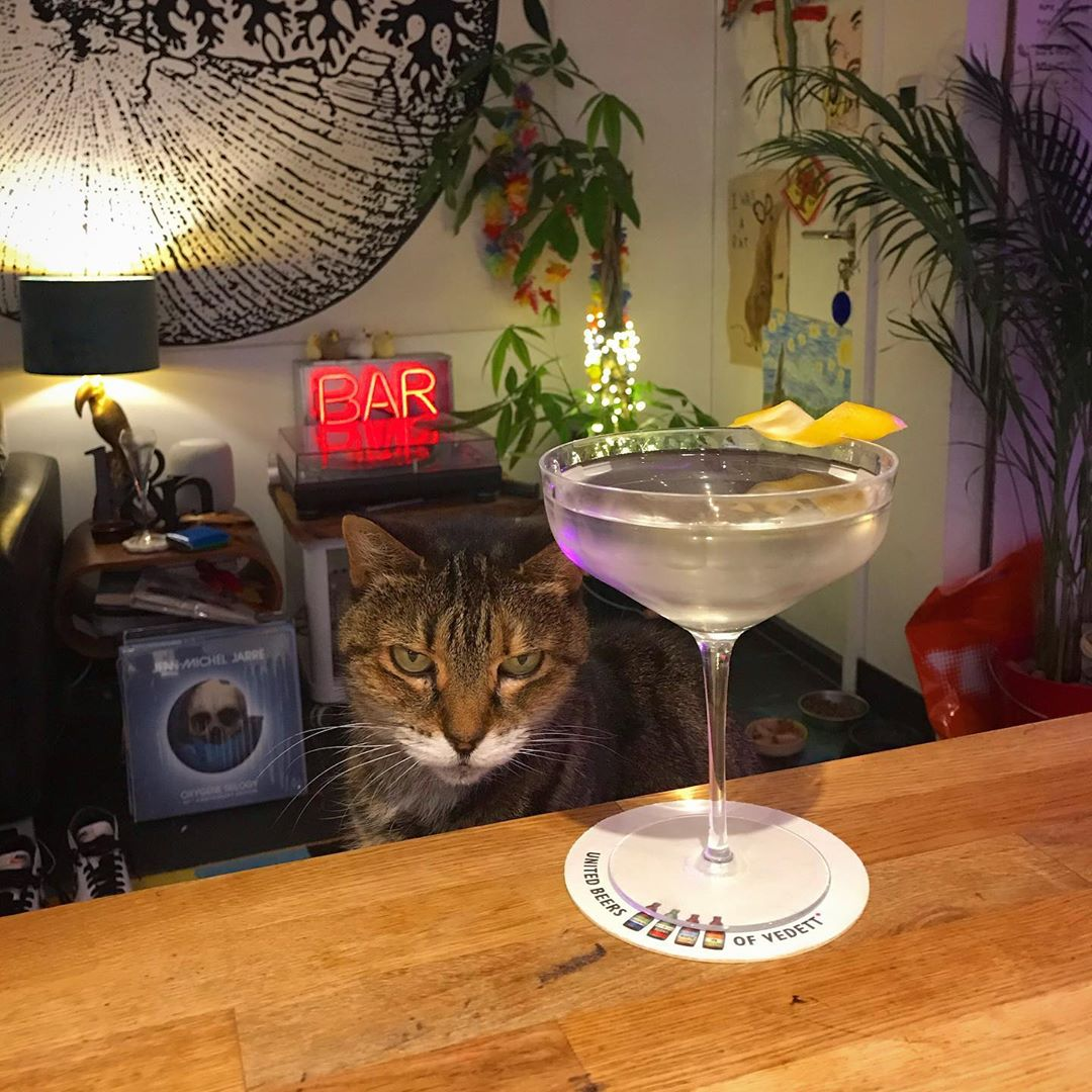 Sunday Martini time